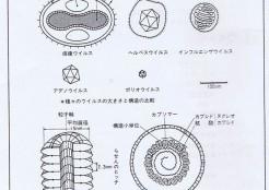 図1-19