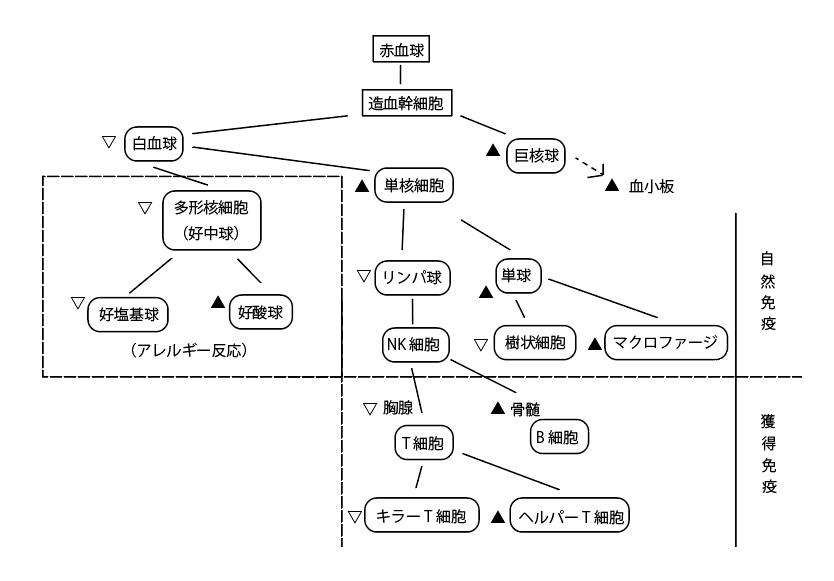 五行の相生相克(話題の症状42)2'''