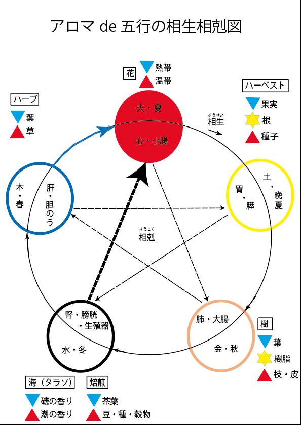 アロマde陰陽五行の相生相克(5回目)
