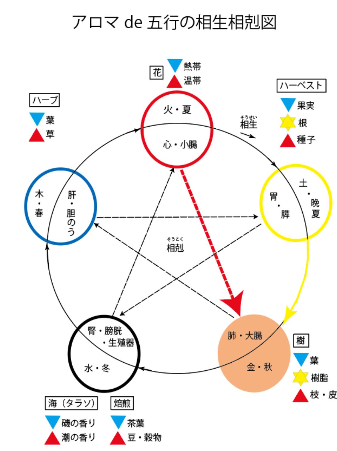 アロマde陰陽五行の相生相克(6回目)