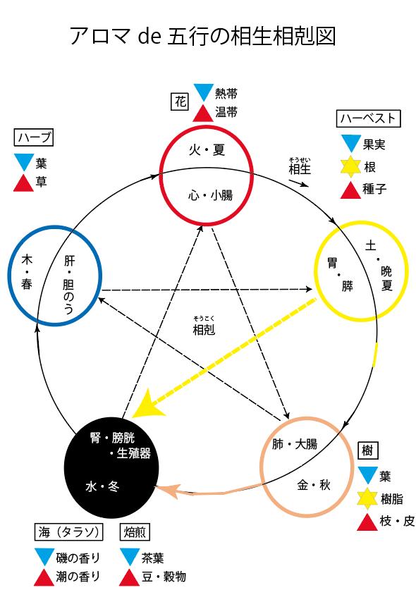 アロマde陰陽五行の相生相克(7回目)